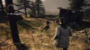 Alan Wake: Test des Xbox 360-exklusiven Mystery-Thrillers
