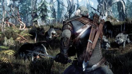 The Witcher 3: Wild Hunt in der E3-Vorschau.