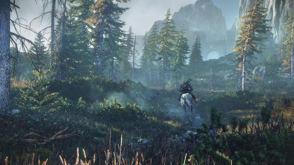 The Witcher 3: Wild Hunt in der E3-Vorschau. (1)