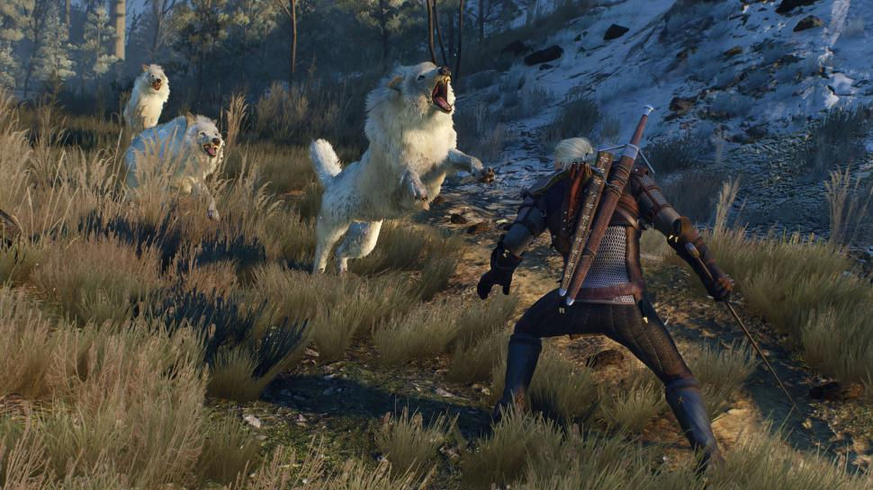 The Witcher 3: Wild Hunt erreicht Gold-Status. (1)