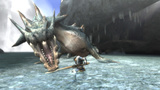 Monster Hunter Tri: Capcom kündigt Download-Quests an